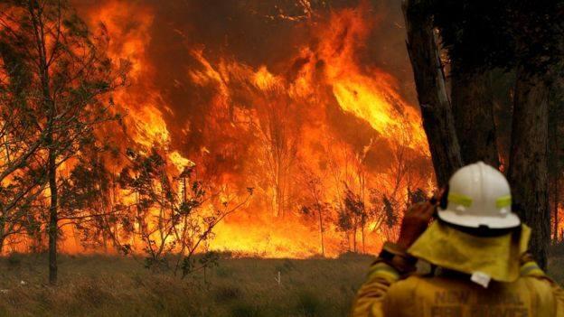 Avstraliyada yanğın nəticəsində daha bir insan həlak oldu