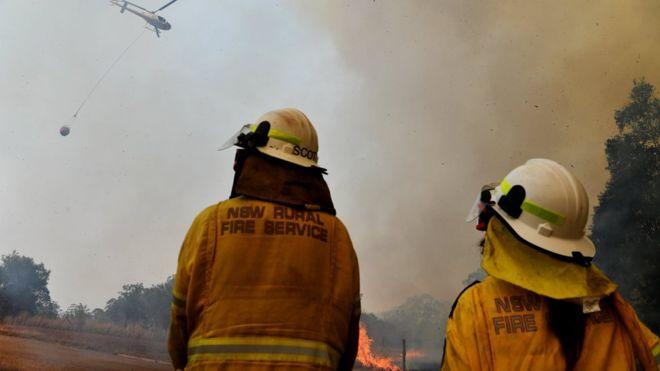 """""""ბიბისი"""" - ავსტრალიაში ეჭვობენ, რომ ტყის მასშტაბური ხანძარი 16 წლის მოზარდმა გააჩინა"""