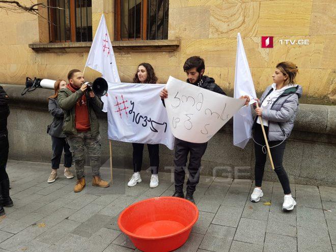 Активисты молодежного движения провели акцию у входа в парламент Грузии