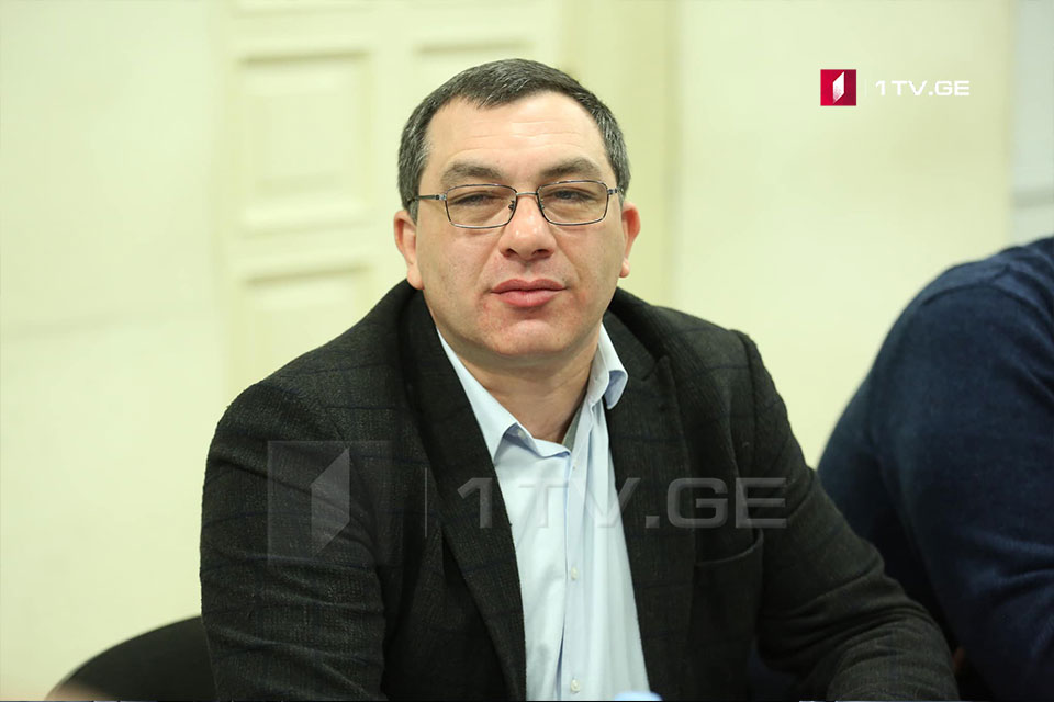 Giga Bokeria - The ruling party asked for additional time to state viewpoint on German model
