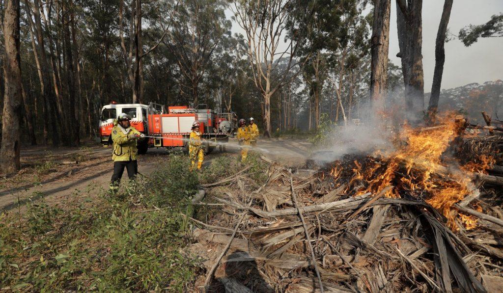 Ավստրալիայի անտառներում հրդեհի հետևանքով զոհվել է առնվազն 480 միլիոն կենդանի