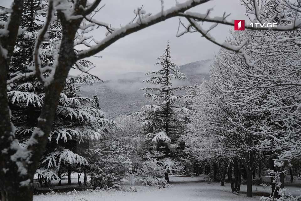 საქართველოში დღეს თოვლი და წვიმაა მოსალოდნელი
