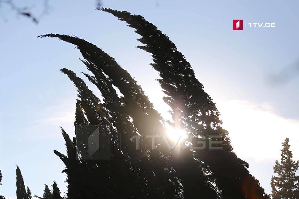 Օդերևույթաբանները Սև ծովի առափնյա շրջաններում, Զեմո Իմերեթիում, Կոլխեթիի ցածրադիր վայրերում և Գորի-Սուրամի հատվածում կանխատեսում են ուժեղ քամի