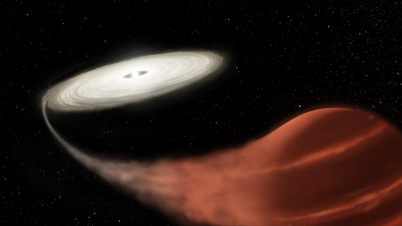 აღმოჩენილია ვამპირი ვარსკვლავი, რომელმაც კომპანიონი ვარსკვლავი სრულიად შეჭამა