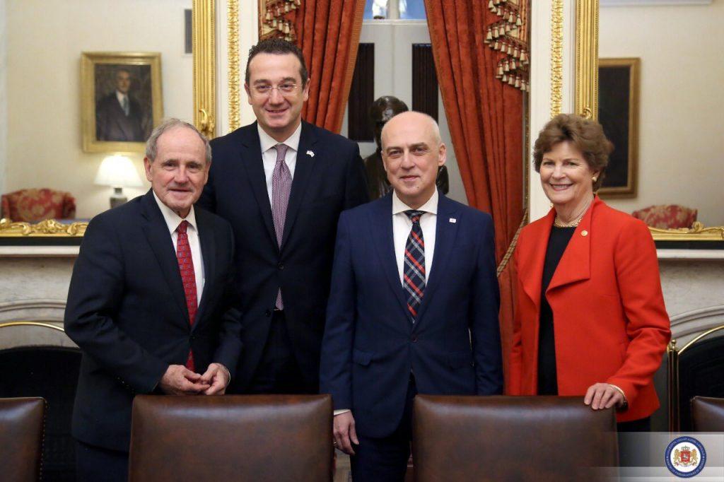 Georgian FM on meeting with US senators