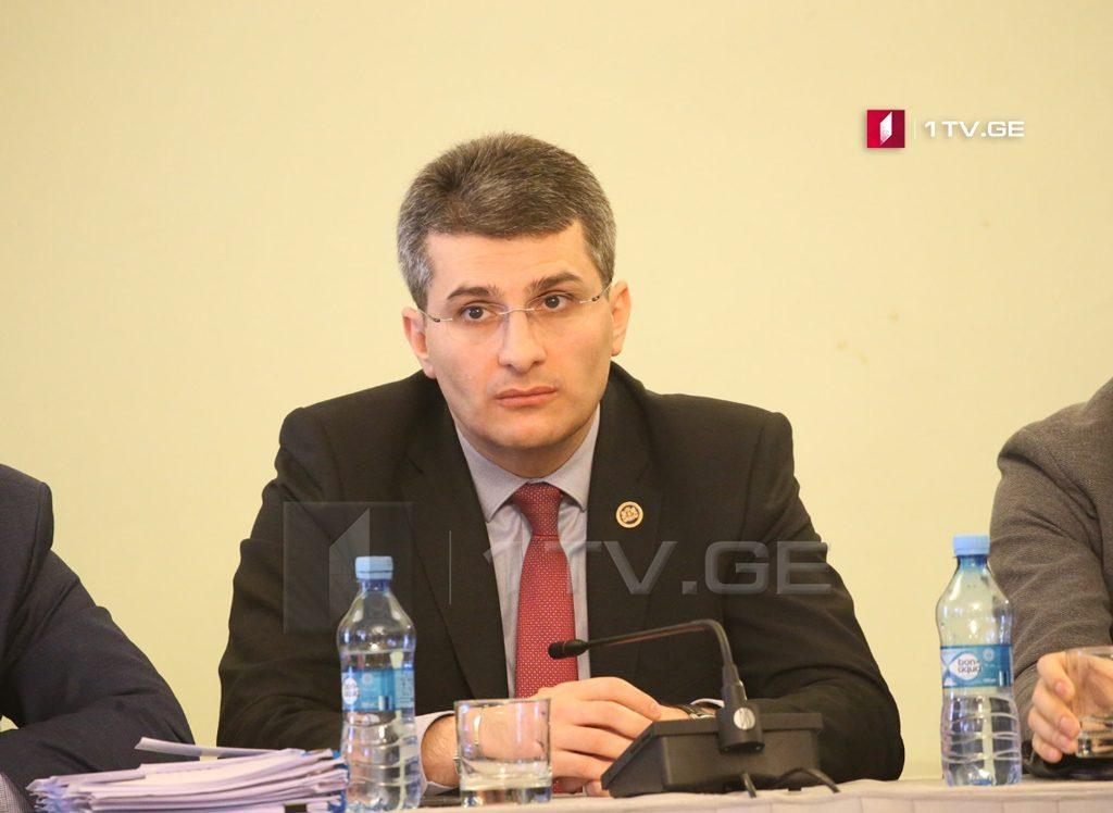 Mamuka Mdinaradze bəyan edir ki, müxalifət Mixail Saakaşvilinin inqlabi ssenarisi ilə gedir