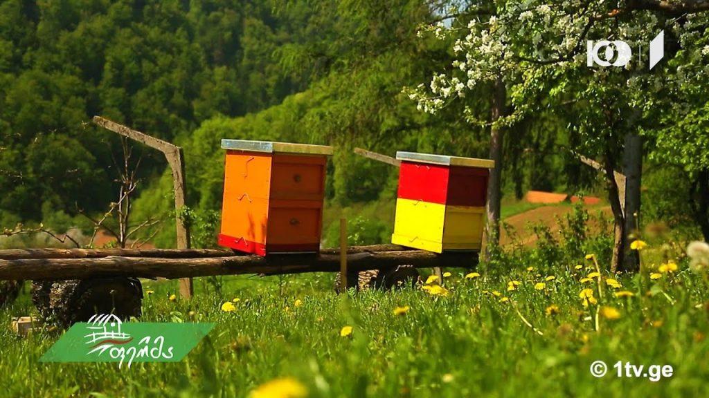 ჩვენი ფერმა - მეფუტკრეობა, ქართული თაფლის ანალიზის შედეგები