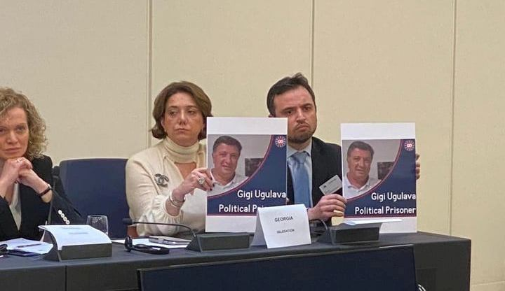 Salome Samadashvili: I am sure thatfact-finding mission to study Gigi Ugulav's case will not be set up