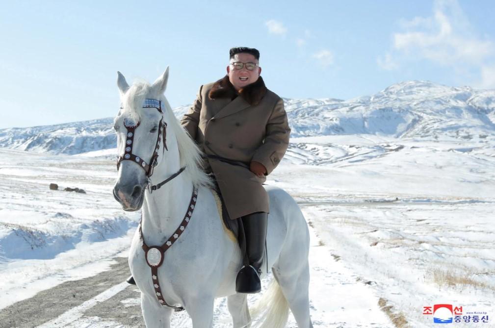 ჩრდილოეთ კორეამ რუსეთისგან 12 ცხენი 75 509 დოლარად შეისყიდა