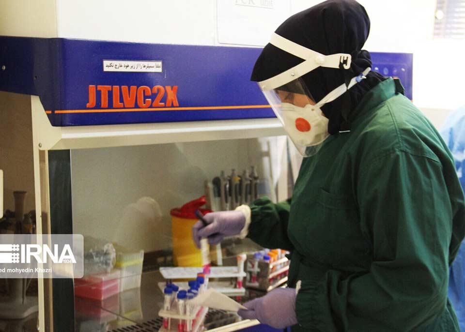 Coronavirus death toll in Iran reaches 194