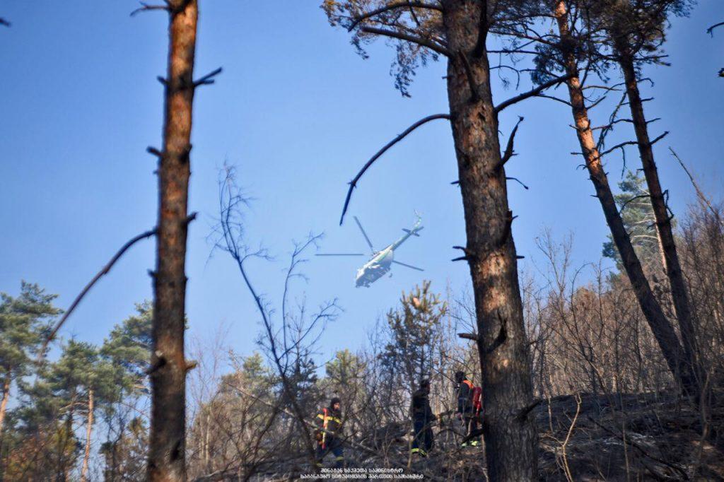 საგანგებო სიტუაციების მართვის სამსახური ტყისხანძრებთან დაკავშირებით განცხადებას ავრცელებს