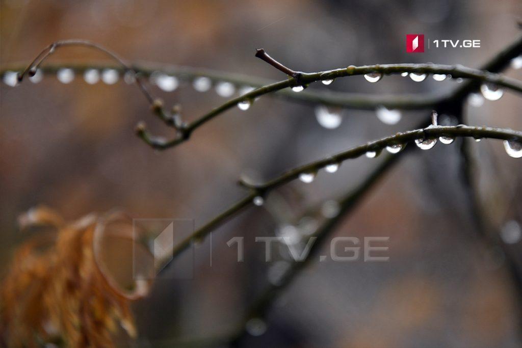 საქართველოში 1-2 ნოემბერს ძლიერი წვიმა და ქარია მოსალოდნელი