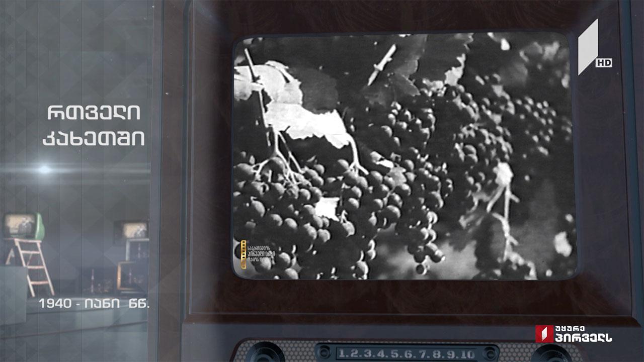 #ტელემუზეუმი რთველი კახეთში, კადრები 1940-იანი წლების არქივიდან
