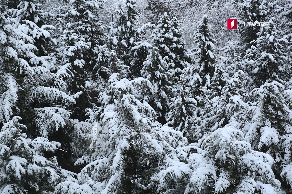 Snow to continue for 2 days in Georgia