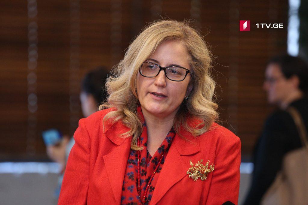 Վրաստանում Թուրքիայի դեսպան. Կարծում եմ, որ մենք պետք է աջակցենք Վրաստանին ռազմաօդային ուժերի կարողությունները ուժեղացնելու հարցում