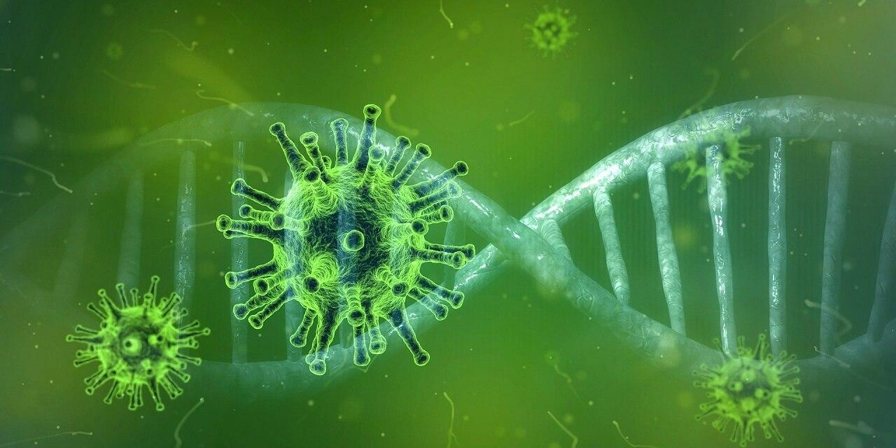 კორონავირუსის გადამტანი ყოველი მე-4 ადამიანი სავარაუდოდ ასიმპტომურია — ყველაფერი, რაც ამ საკითხზე ცნობილია