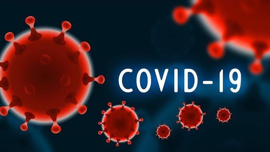 Число зараженных коронавирусом в Армении увеличилось до 921 человека