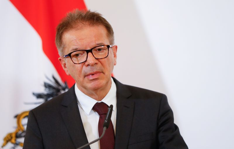 Austrian Minister of Health: Georgia manages to control the virus well