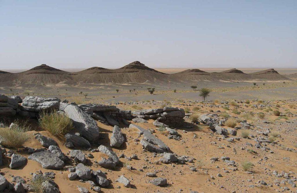 პალეონტოლოგებმა დედამიწის ისტორიაში ყველაზე საშიში ადგილი იპოვეს