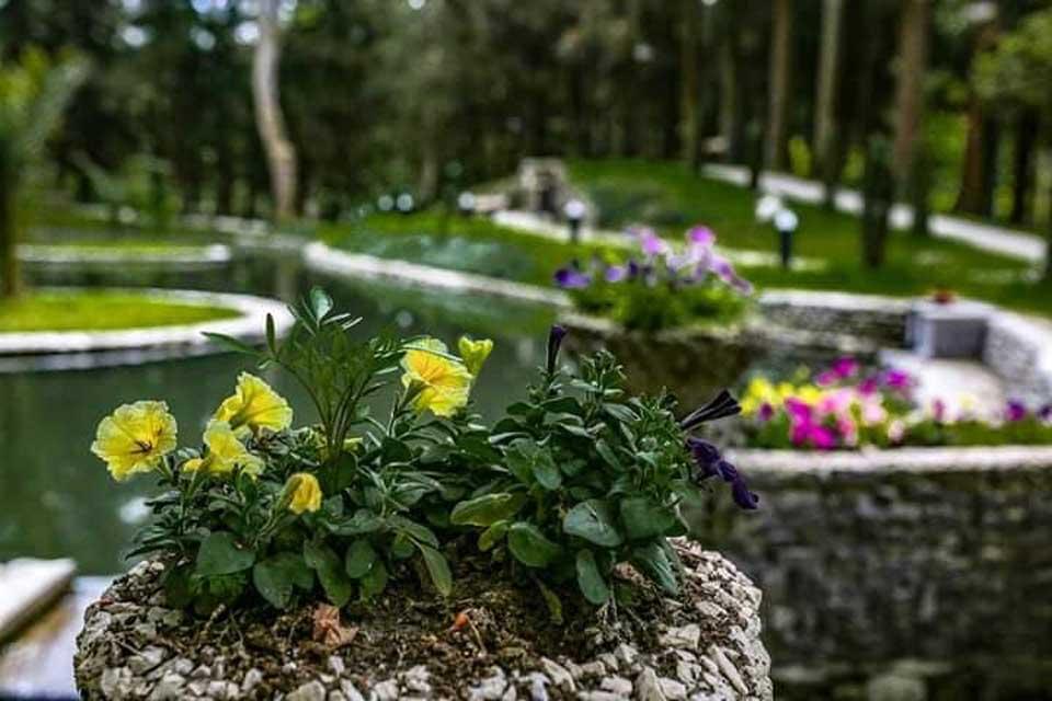 ზუგდიდის ბოტანიკური ბაღი დღეს გაიხსნება და წლის ბოლომდე შესვლა უფასო იქნება