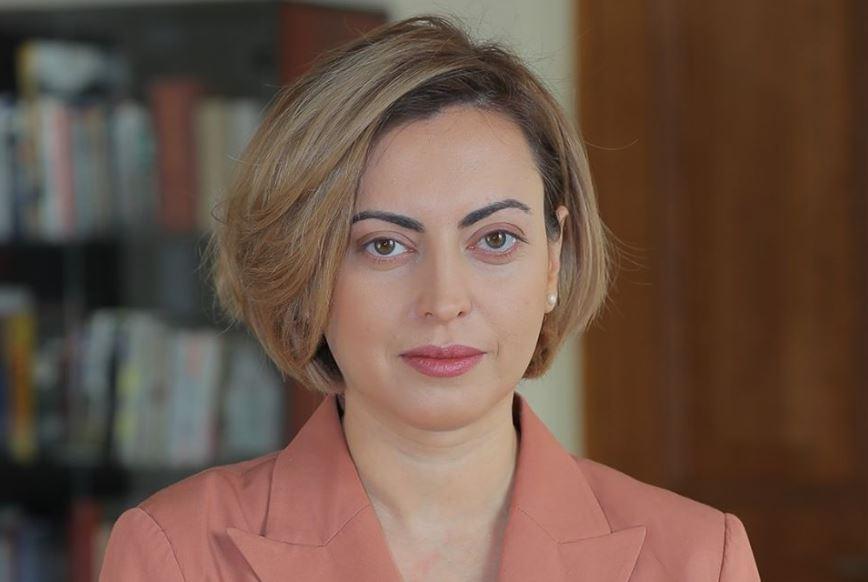 სომხურ-ქართული პარლამენტთაშორისი ჯგუფის თავმჯდომარე ქართველ ხალხს მხარდაჭერისთვის მადლობას უხდის