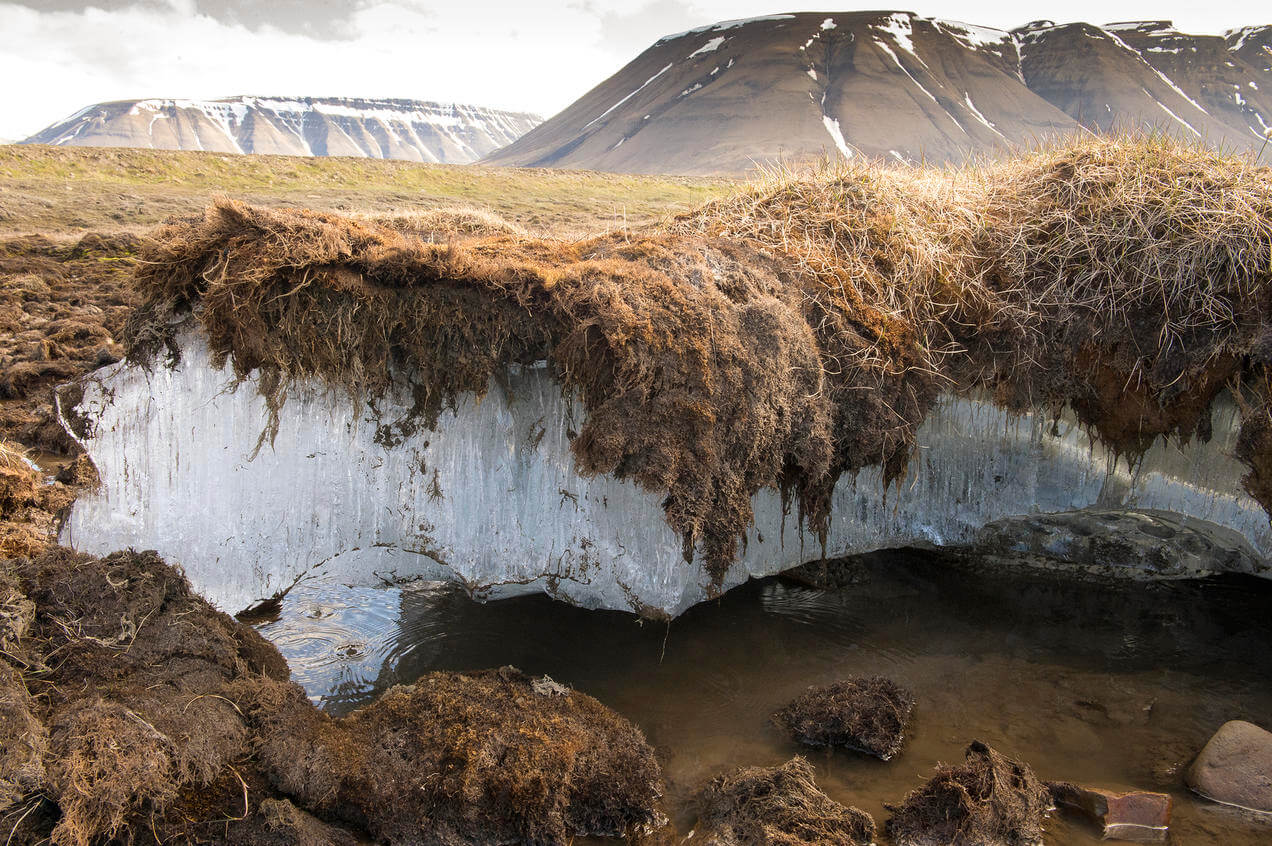 გაყინული ნიადაგების დნობა ათავისუფლებს უძველეს ვირუსებსა და ნახშირბადს — მეცნიერები გვაფრთხილებენ