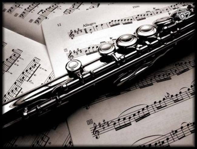 სი ბემოლ ვიტამინი - მუსიკა-ჯადოსნური სამყარო