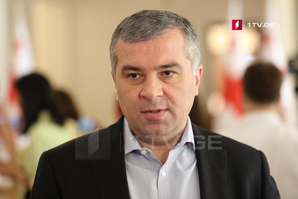 Leader of European Georgia – If Mikheil Saakashvili plans to arrive, let him arrive and take the responsibility