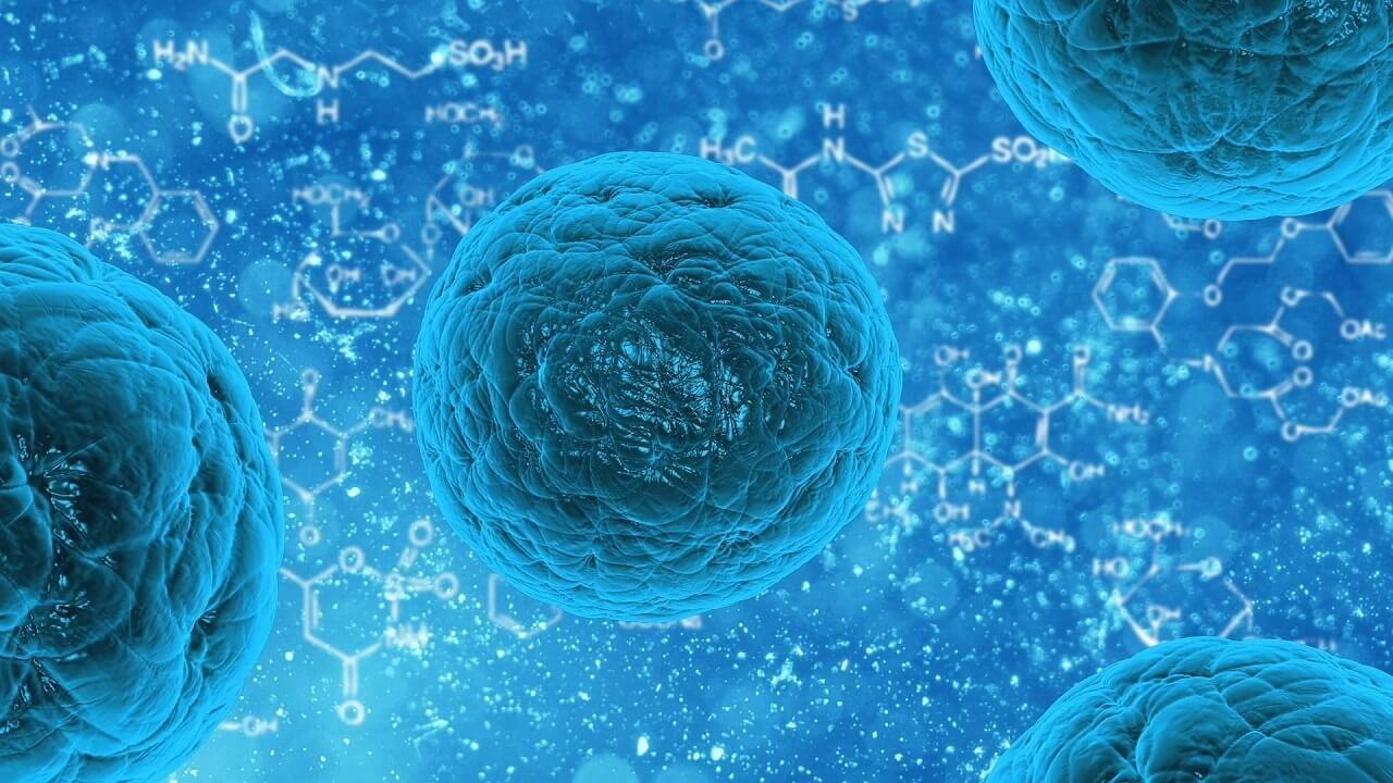 მეცნიერებმა შექმნეს ცილა, რომელიც კიბოს ებრძვის და ნეირონებს აღადგენს