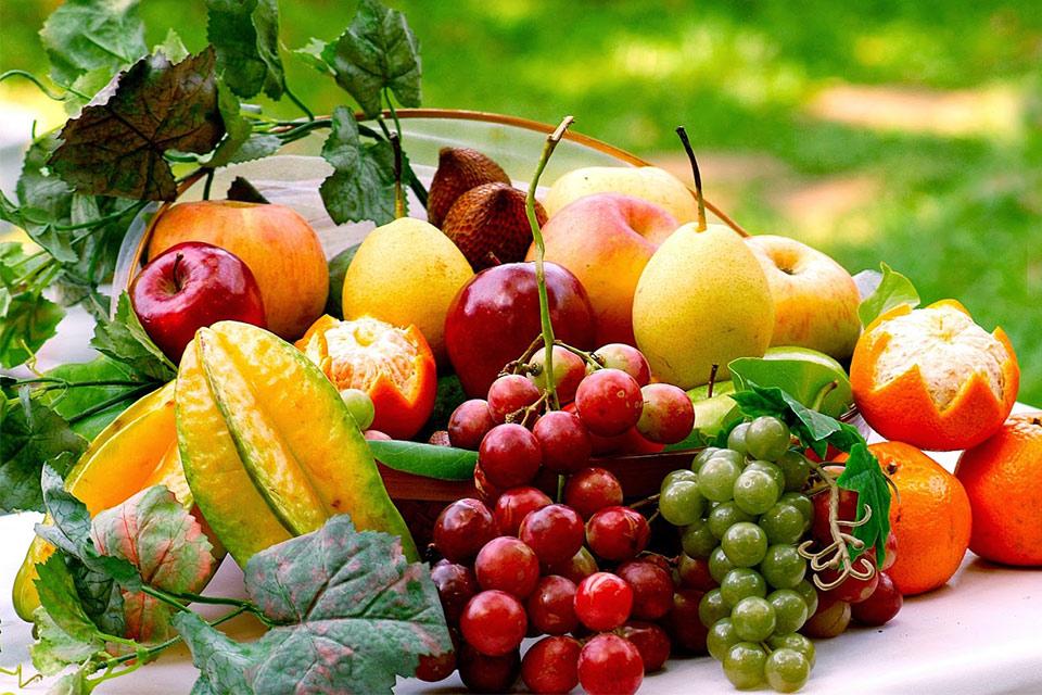 ჩვენი ფერმა - ნატურალური მეურნეობა, მისი მართვა და განვითარება
