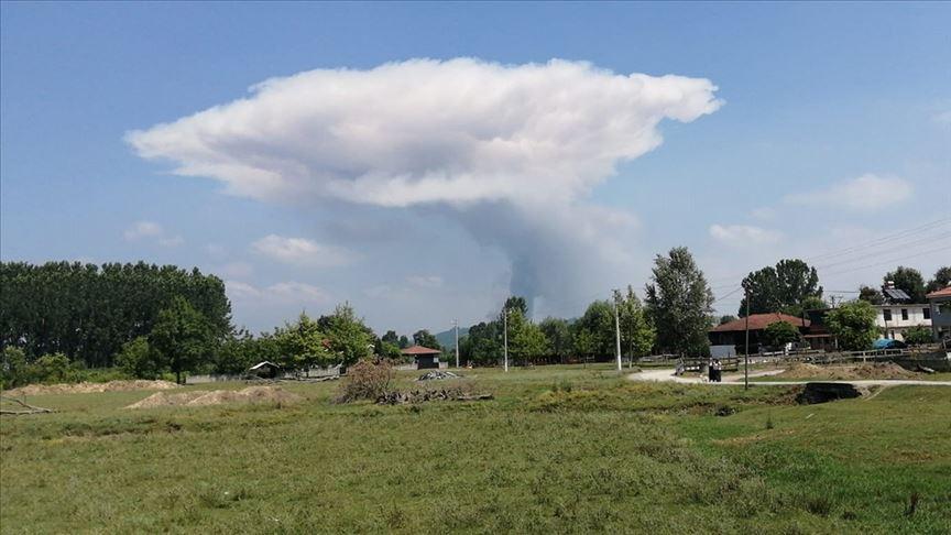 В Турции на фабрике фейерверков произошло несколько взрывов