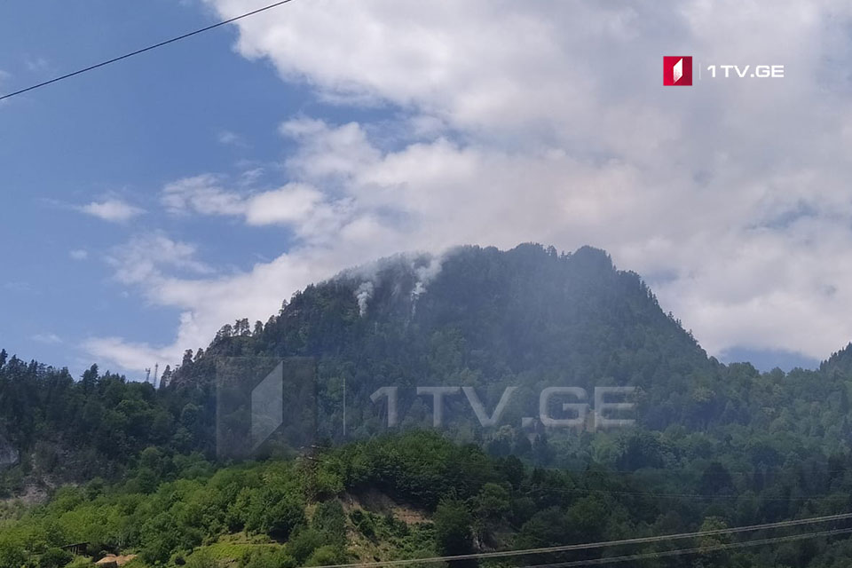 Մեստիայի մունիցիպալիտետի Իդլիան գյուղի մոտակայքում, լեռան լանջին հրդեհ է