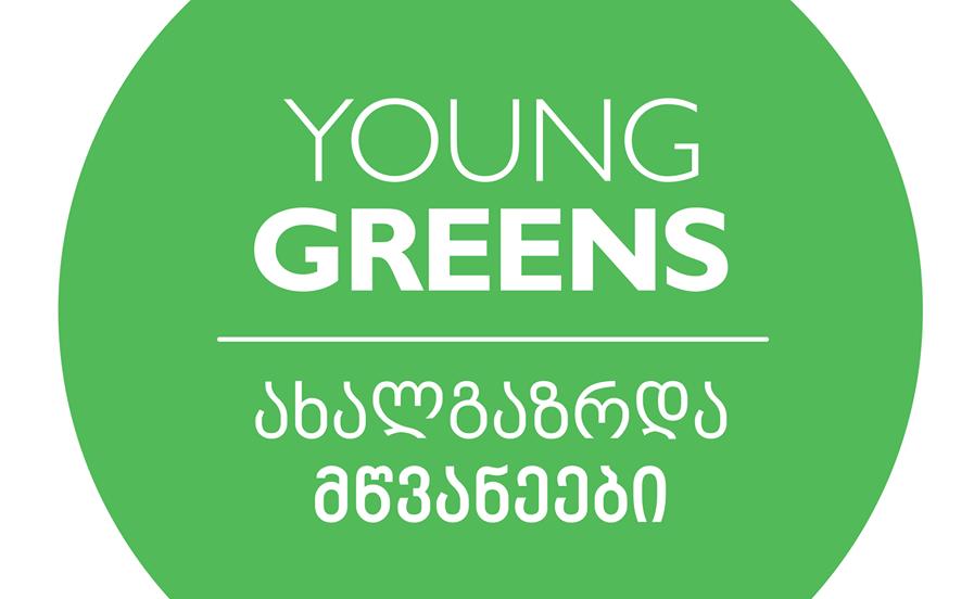 """ორგანიზაცია """"ახალგაზრდა მწვანეები"""" რაჭაში მომხდარ ინციდენტს ეხმაურება"""