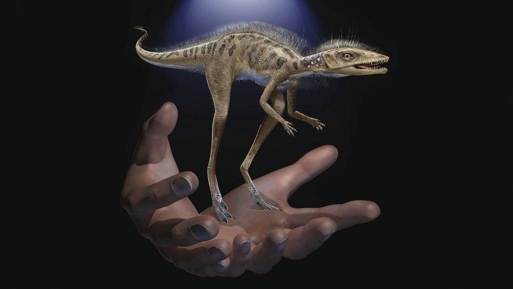 მადაგასკარზე დინოზავრების ციცქნა წინაპარი აღმოაჩინეს — #1TVმეცნიერება