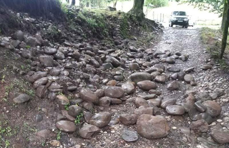 წალენჯიხის მუნიციპალიტეტში ძლიერი წვიმის შედეგად შიდა გზები დაზიანდა, დაიტბორა ყანები