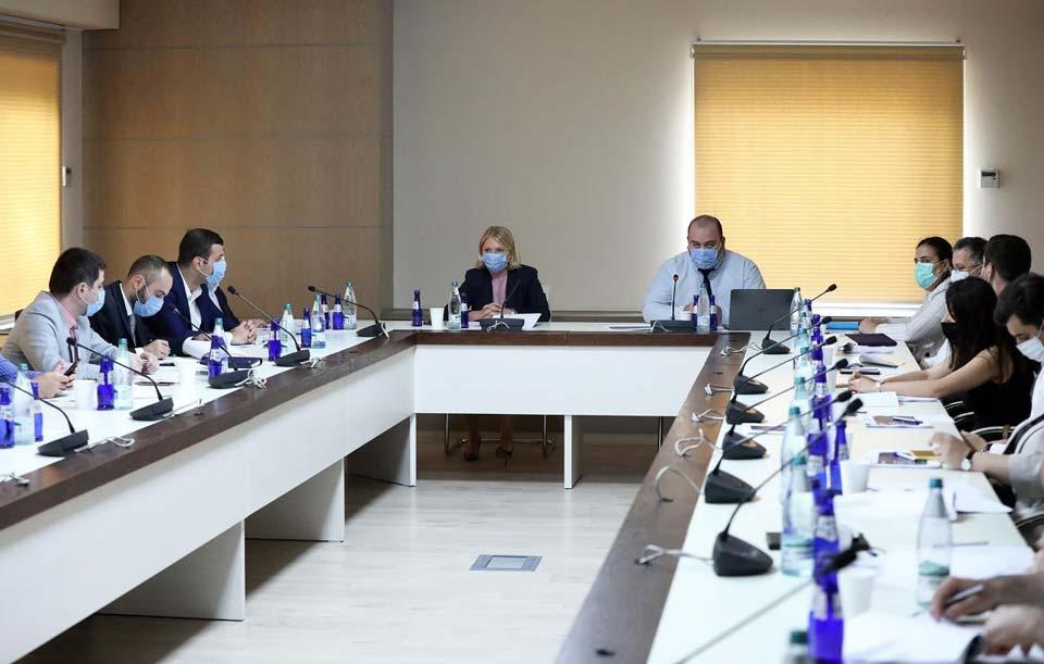 ნათია თურნავა და ბექა ლილუაშვილი უცხოელ ეკონომისტებს შეხვდნენ