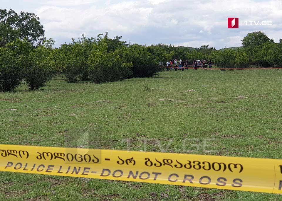 Семья погибшей Тамар Бачалиашвили исключает версию самоубийства