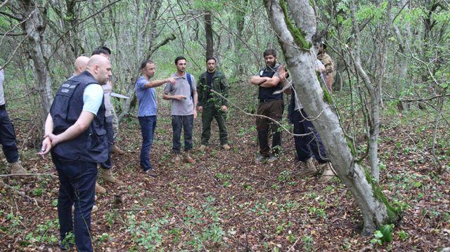 ახმეტაში, სახელმწიფო ტყის ფონდის ტერიტორიაზე ინვენტარიზაციის სამუშაოები გრძელდება