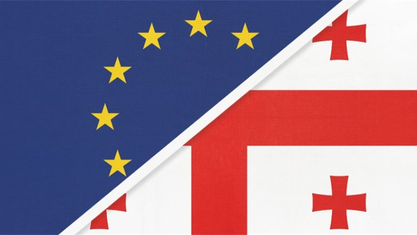პოლონელი ევროპარლამენტარი რიჩარდ ცარნეკი - საქართველოს დასავლეთთან დაახლოების გზაზე ევროპის მხარდაჭერა და თანადგომა სჭირდება