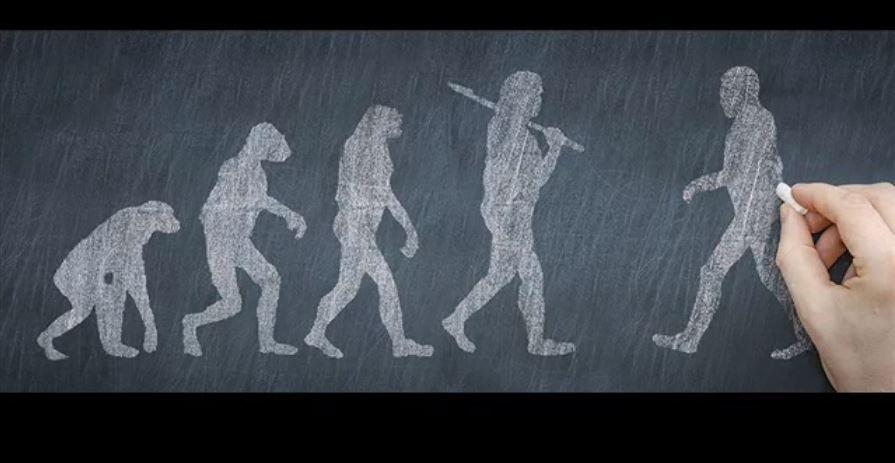 ზოგიერთი ადამიანი უძველესი, გაურკვეველი წინაპრის დნმ-ს ატარებს — ახალი კვლევა #1tvმეცნიერება