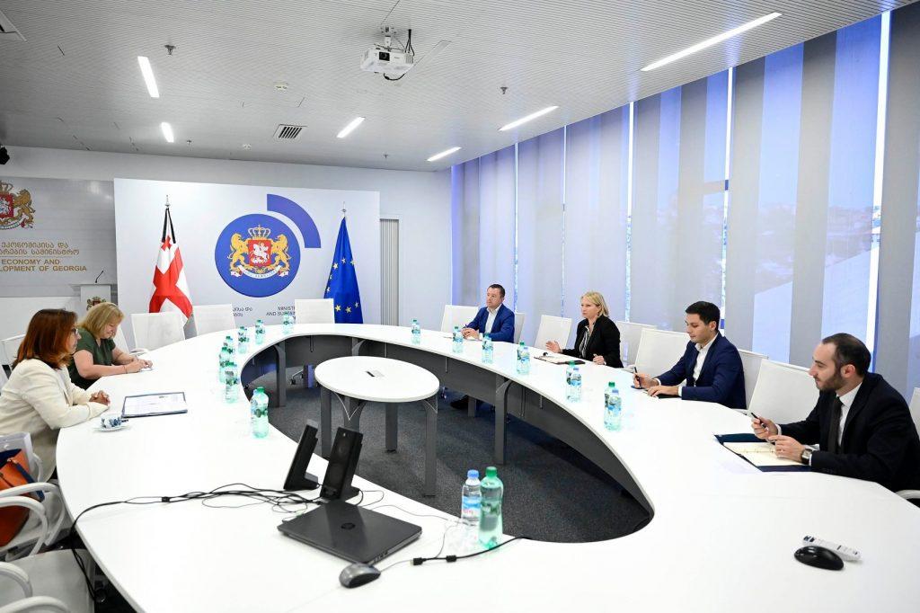 ნათია თურნავა მიგრაციის საერთაშორისო ორგანიზაციის საქართველოს მისიის ხელმძღვანელს შეხვდა