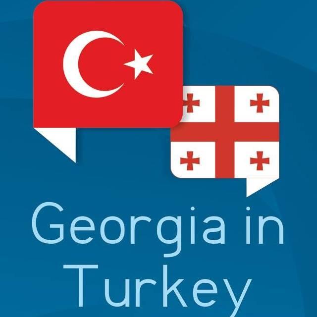 Թուրքիայում Վրաստանի դեսպանությունը Վրաստանի քաղաքացիների ուշադրության համար տարածում է հայտարարություն