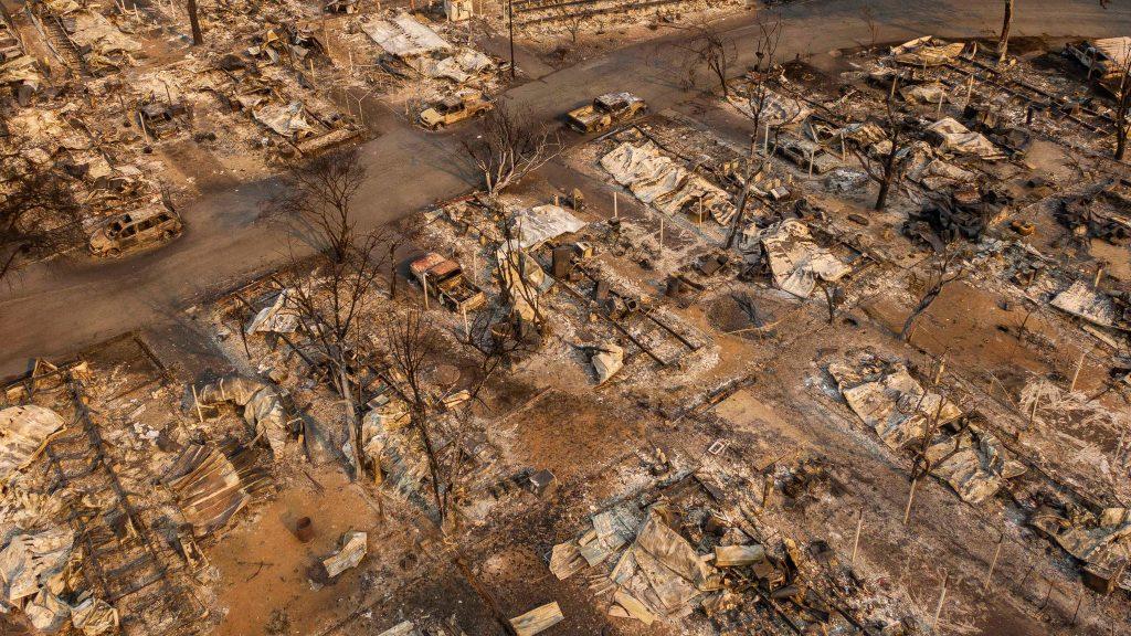 დონალდ ტრამპი ტყის გახშირებულ ხანძრებს შტატების ადგილობრივი ხელისუფლების არასწორ მენეჯმენტს უკავშირებს
