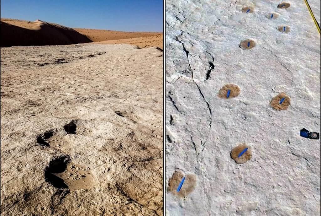 საუდის არაბეთში 120 000 წლის წინანდელი ადამიანების ნაფეხურები აღმოაჩინეს — #1tvმეცნიერება
