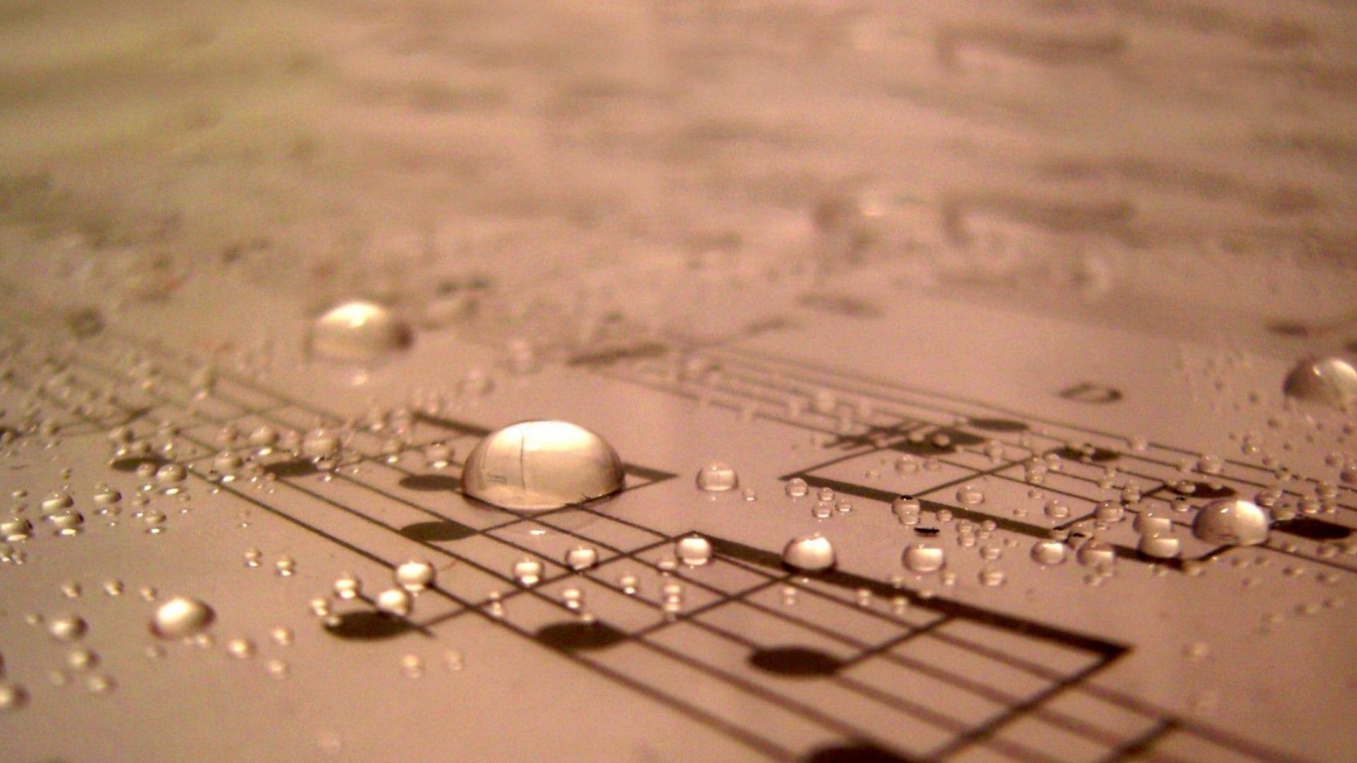 სი ბემოლ ვიტამინი - მუსიკა - ყოველწამიერი საზრდო