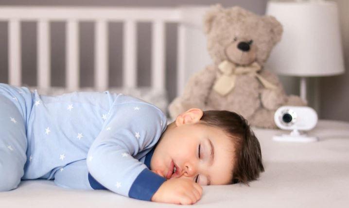 რატომ სძინავთ პატარა ბავშვებსა და ცხოველებს დიდხანს — ახალი კვლევა #1tvმეცნიერება