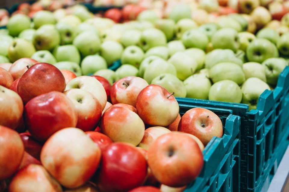 სოფლის მეურნეობის სამინისტროს ინფორმაციით, ქართული ვაშლის ექსპორტით მიღებული შემოსავალი  321 ათასი აშშ დოლარით გაიზარდა