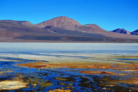რით არსებობდა სიცოცხლე დედამიწაზე ჟანგბადის გამოჩენამდე — ახალი კვლევა #1tvმეცნიერება