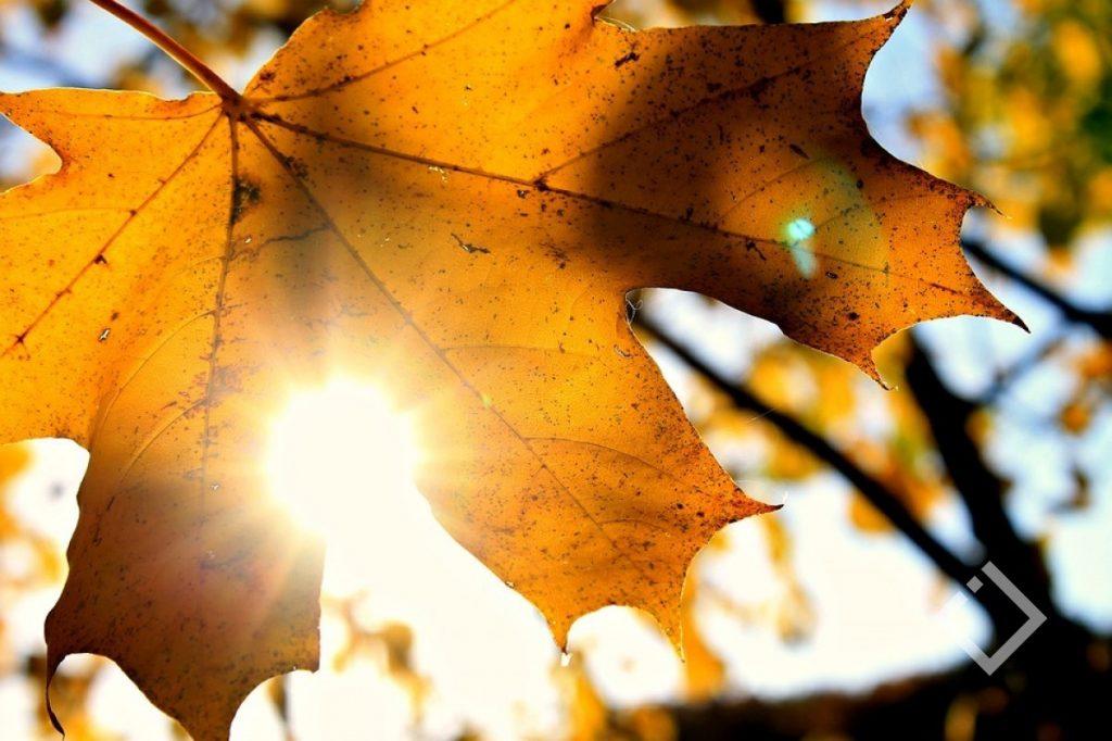 პიკის საათი - ოქტომბრის ამინდი