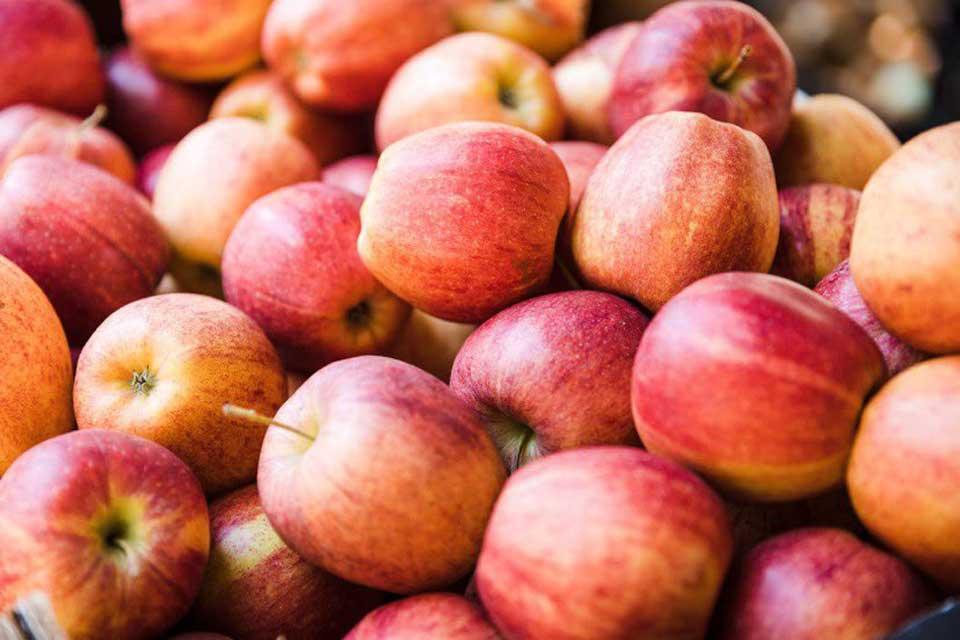 4 ოქტომბრის მონაცემებით, საქართველოდან 1 753 ტონა ვაშლია ექსპორტირებული
